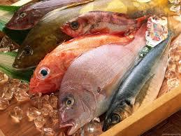 Balığın Faydaları Nelerdir.